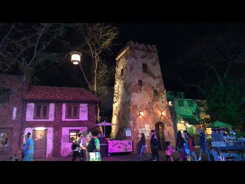 Animal Kingdom Live Stream #2 (Regular) - 2-2-18 - Walt Disney Word
