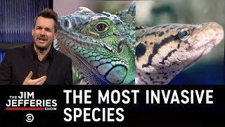 The Most Invasive Species of All - The Jim Jefferies Show