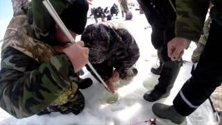 Ловля карася и сазана со льда в Куралово(апрель 2015 г., 2015-04-13T21:34:55.000Z)