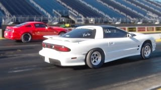 $800 GRUDGE RACE - Mustang vs Trans Am!