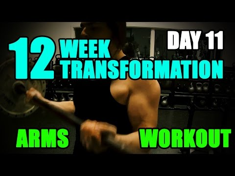 Tags of arnold blueprint cat meme tube arnold schwarzeneggers blueprint to cut arms workout l 12 week transformation challenge l day 11 malvernweather Image collections