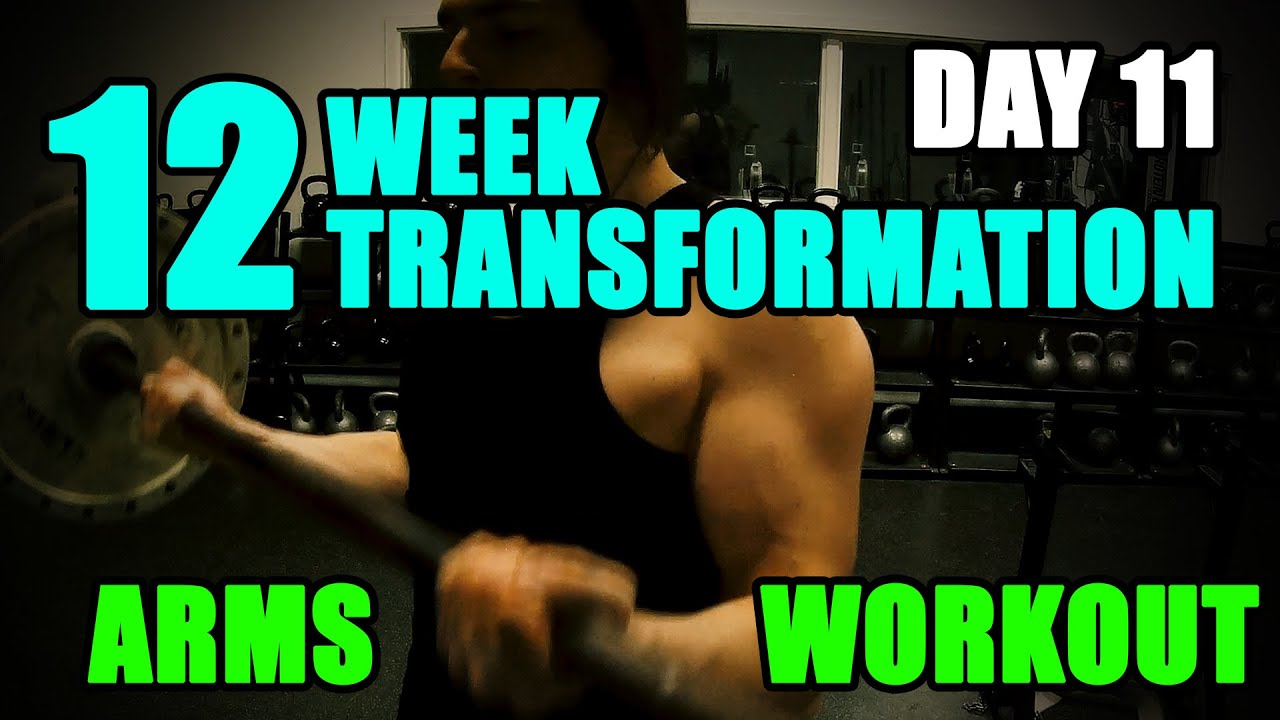 Arnold schwarzeneggers blueprint to cut arms workout l 12 week arnold schwarzeneggers blueprint to cut arms workout l 12 week transformation challenge l day 11 youtube malvernweather Image collections