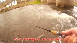 Spin Fishing on the river Our - G-D of Luxembourg
