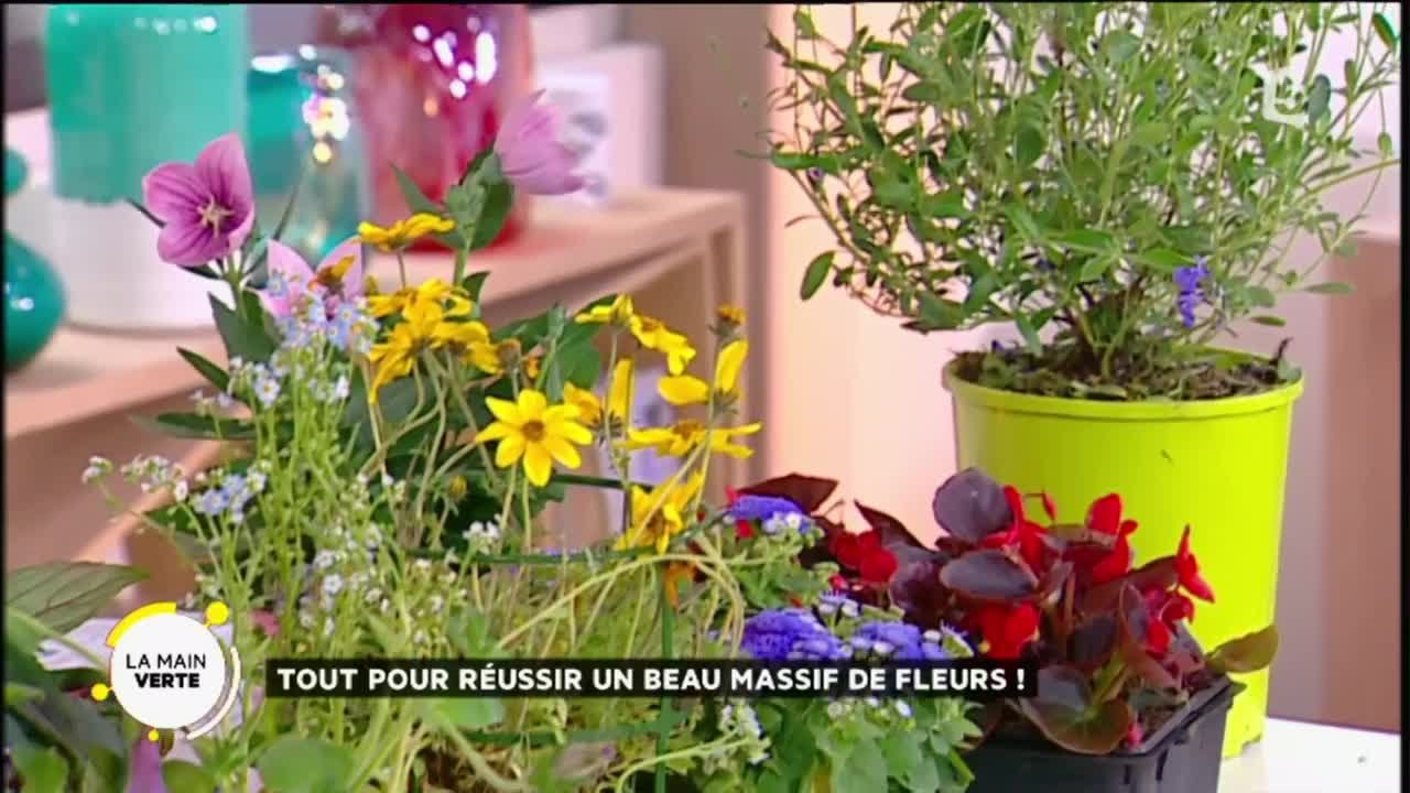 tout pour reussir un beau massif de fleurs