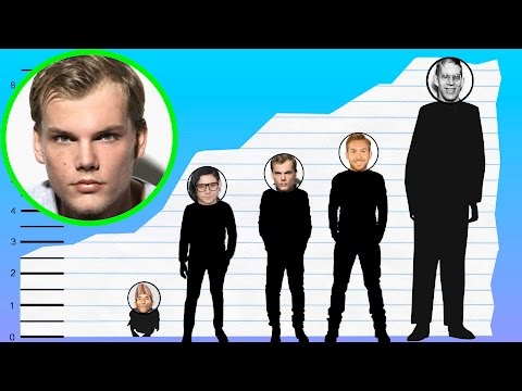 How Tall Is Avicii? - Height Comparison!