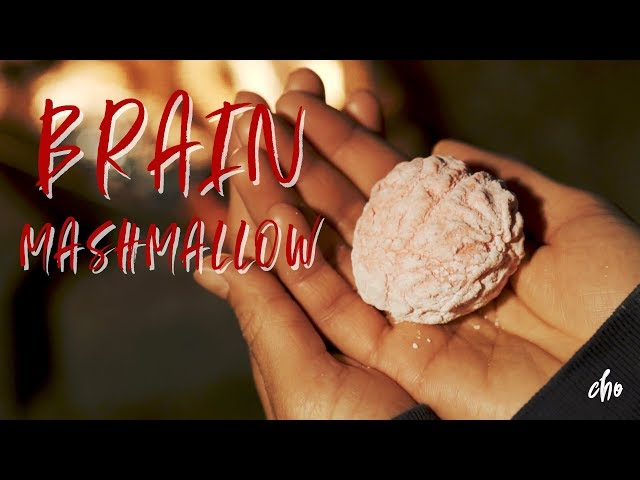 [ Halloween ] 할로윈 기념 뇌 마쉬멜로우 만들기 ~* / BRAIN MASHMALLOW : 초의 데일리쿡
