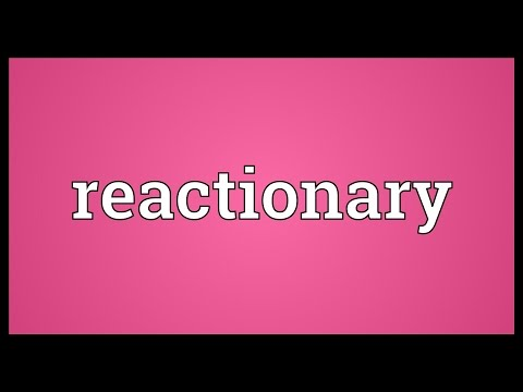 Reactionary Meaning