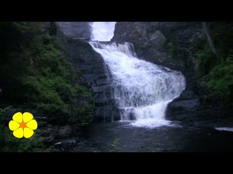 LOUD Waterfalls - White Noise to Write do Yoga or Relax - Cascada de agua para meditar o dormir