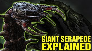 GIANT SERAPEDES EXPLAINED WHAT ARE SERAPEDES IN GEARS OF WAR LORE AND HISTORY EXPLORED