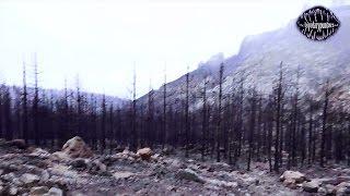 Detrás de los incendios