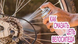 Как смазать цепь велосипеда. Узнай, как правильно смазать цепь велосипеда.(Как смазать цепь велосипеда. Узнай, как правильно смазать цепь велосипеда. В ходе эксплуатации велосипе..., 2016-08-07T21:25:15.000Z)