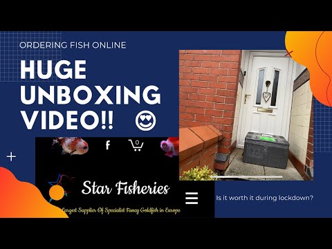 Star Fisheries - Unboxing Video & Review - Ordering Fish Online