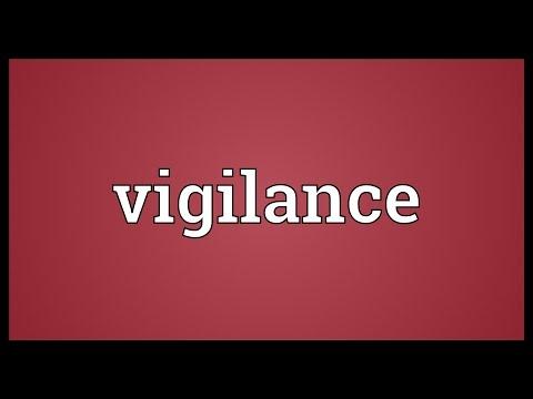 Vigilance Meaning