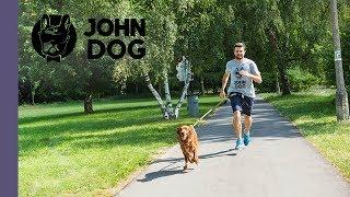 Jak biegać z psem? Canicrossing - TRENING - John Dog
