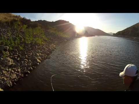 Lake hodges limit youtube for Lake hodges fishing report