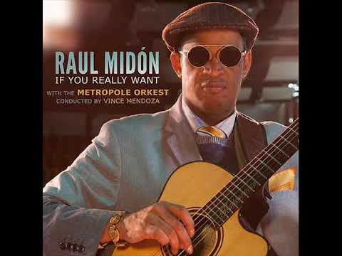 Raul Midón - Sunshine (I Can Fly) Mp3