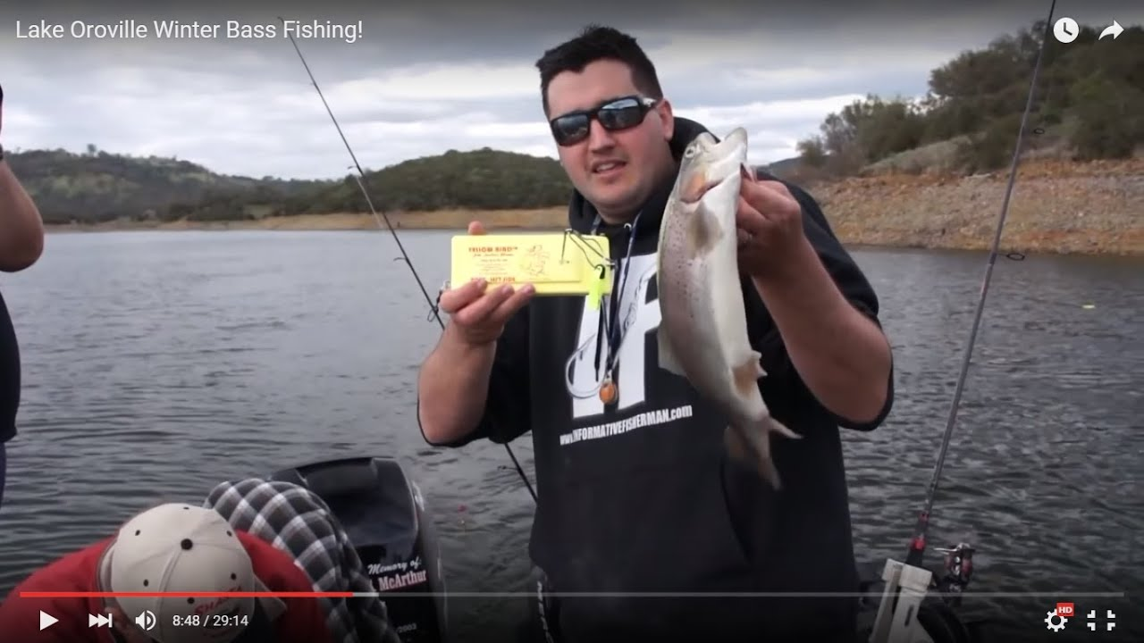 How to bass fishing bass fishing how to catch bass for Lake oroville fishing report