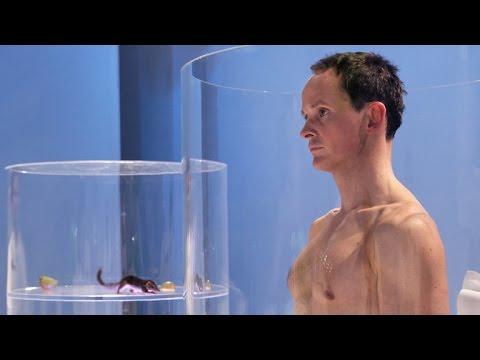Doku Experiment Verwandtschaft - Das Tier in Dir 3 Vom Reptil zum Säuger HD