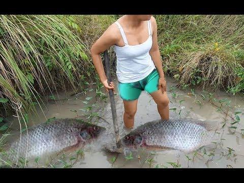Amazing fishing at battambang people fishing in cambodia for Videos of people fishing