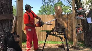Parrot chainsaw carving by Travis Williams