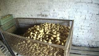 Подробный обзор подвала (погреба) для хранения овощей, картошки