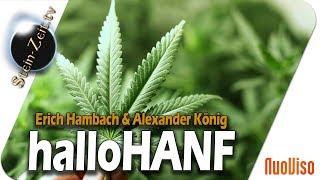 halloHanf! - Erich Hambach & Alexander König bei SteinZeit
