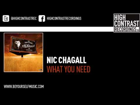 Nic Chagall  - What You Need (Original Extended)