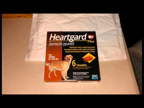 How To Get Heartgard Plus Without A Prescription - Proof