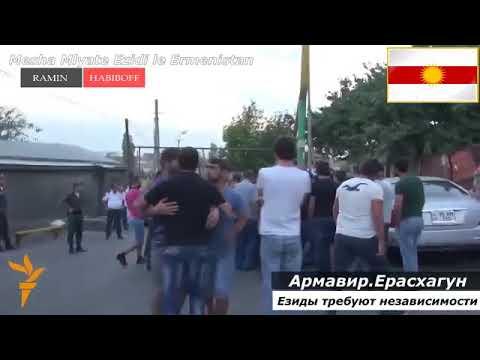 Армяне и Езиды не братья, езиды протестуют в Армении.