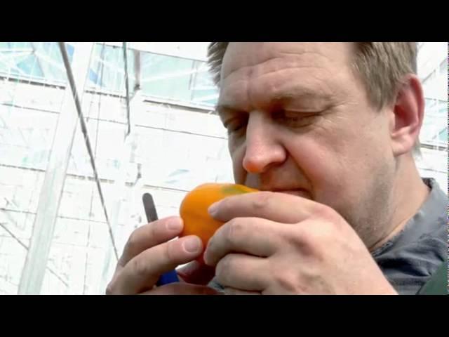 Videoporträt Johann Weidenauer-Pichler