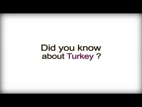 Business culture in Turkey: international business