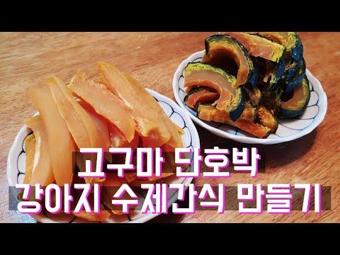 고구마 단호박 강아지 수제간식 만들기 (둥이먹방)