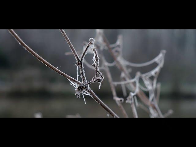 Solesmes en hiver