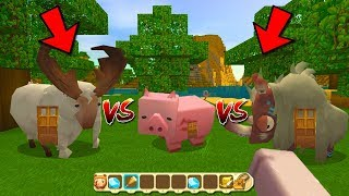 what will happen!? If there is a pig house in the mini world (Miniworld build a house)