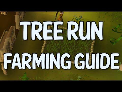 Tree/Fruit Tree Farming Run Guide (OldSchool Runescape)