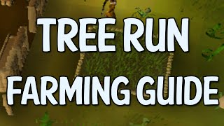Tree/Fruit Tree Farming Run Guide (OldSchool Runescape)