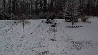 Snow Storm January 2010 - Otto Attacks!