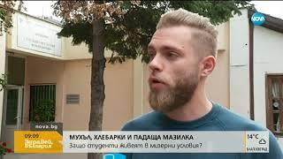 Потресаваща мизерия в студентски общежития в София - Здравей, България (24.09.2019)
