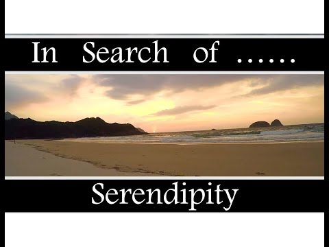 in-search-of-serendipity