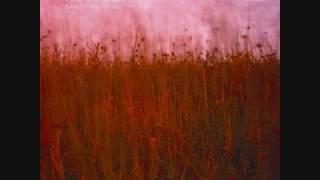 Wild Flower (Povo Remix)