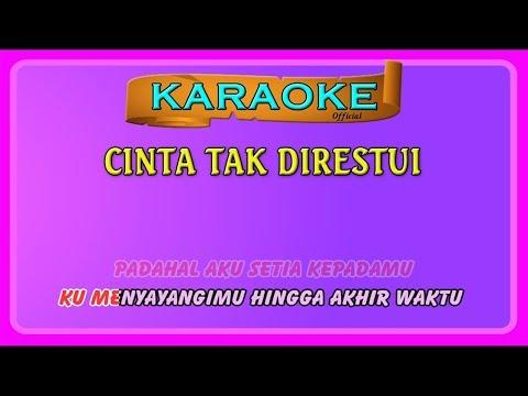 CINTA TAK DIRESTUI ~ Karaoke