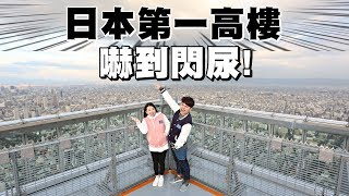 嚇到閃尿!站上日本第一高樓:阿倍野Harukas 300【蔡阿嘎Life】