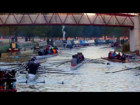 Rowing popularity in Cambridge is harming wildlife