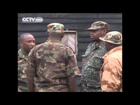 DRC M23 reinforces its positions around the eastern city of Goma