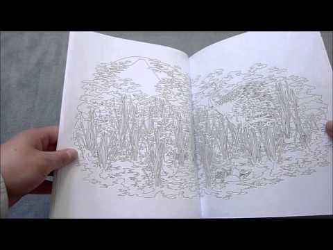 """Livre de coloriage """"les Saisons du Japon, coloriages zen et haïkus"""" de Nancy Peña"""