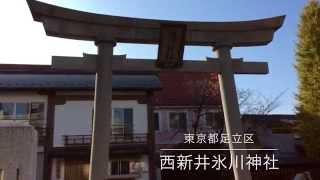 西新井氷川神社---東京都足立区