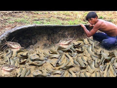 Awesome Fishing In Dry Season 2020 - Best Catching Fish From Secret Hole Under Big Tree