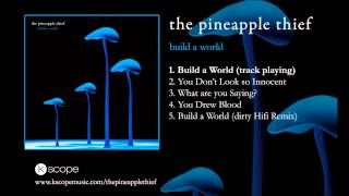 The Pineapple Thief - Build a World (from Build a World EP)