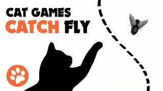 CAT GAMES ★ CATCH FLY ON THE SCREEN for cats