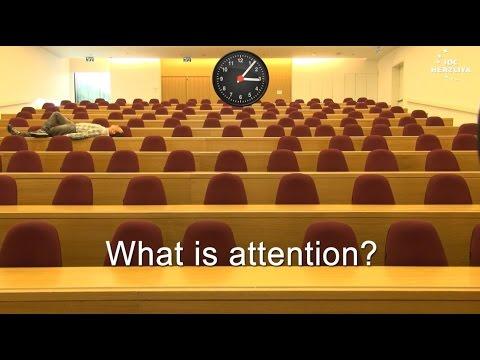 attention:-cognitive-psychology---dr.-boaz-ben-david